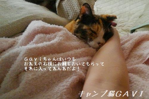 170801_852512.jpg