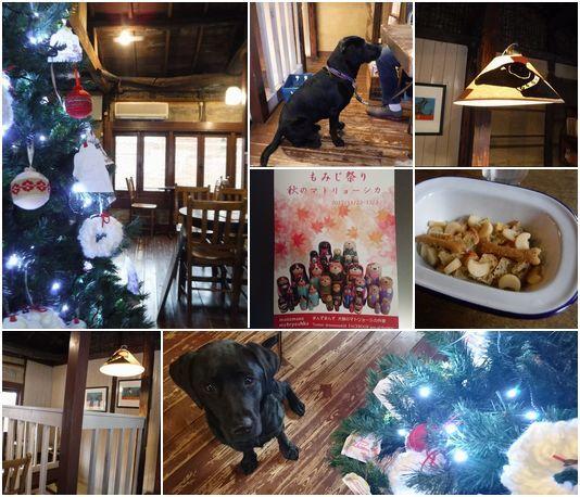 20171129 DSC_0159 dogcafe