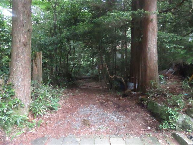 karei106_R.jpg