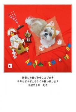 年賀状プレゼント1-800x600