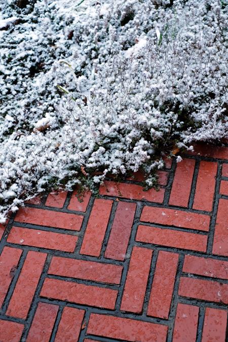 赤レンガとタイムと雪11