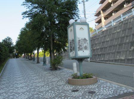 maikoeki8.jpg