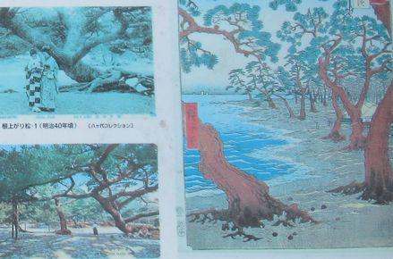 maikokouenn2.jpg