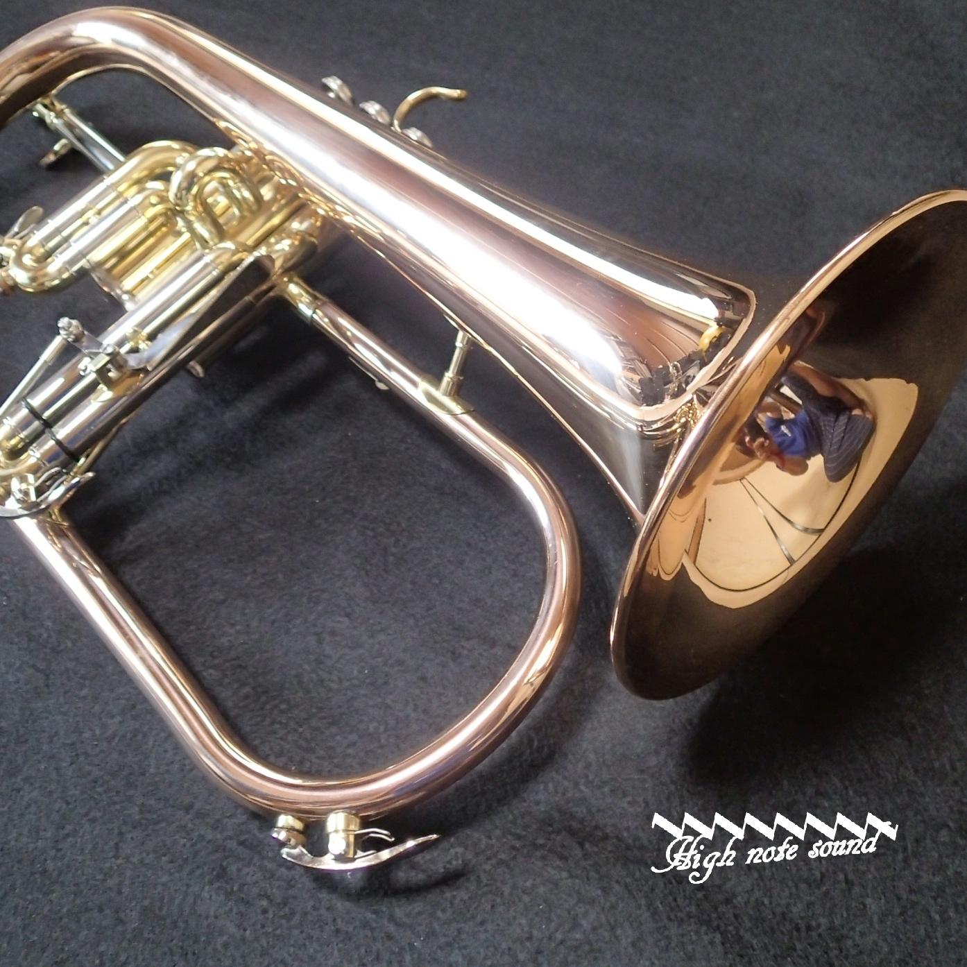 100FHR-007