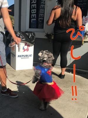 スーパーウーマン17