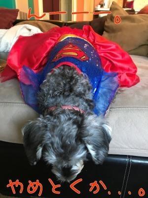 スーパーウーマン7