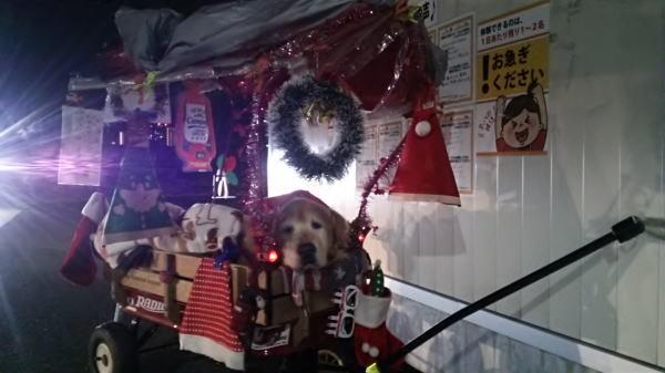 ラヴィンサンタと連れカーブス2017年12月①