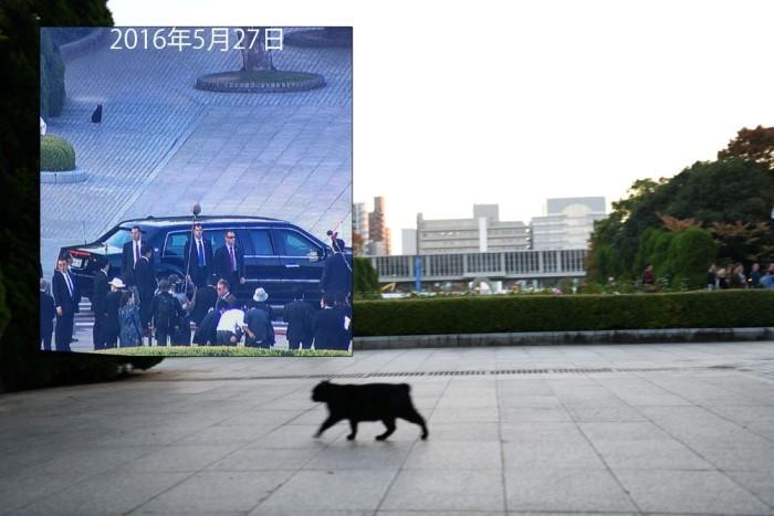 広島平和公園 黒猫 オバマ大統領