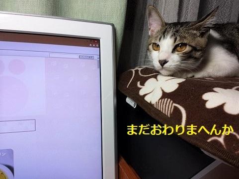 20141130_212004 (2)