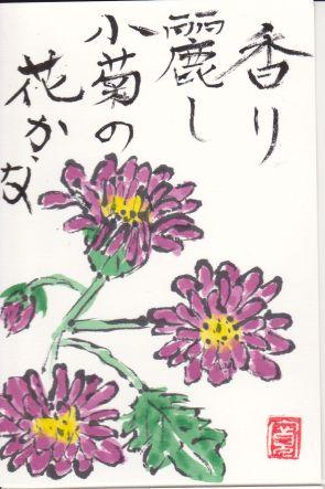 803-17-112小菊