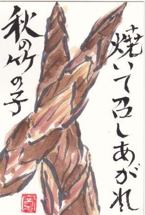 806-17-1024四方竹