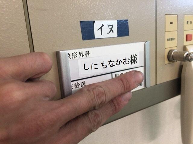 20170812_007.jpg