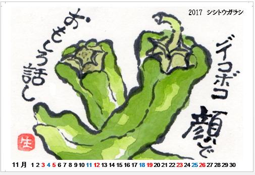 2017-11 シシトウガラシ