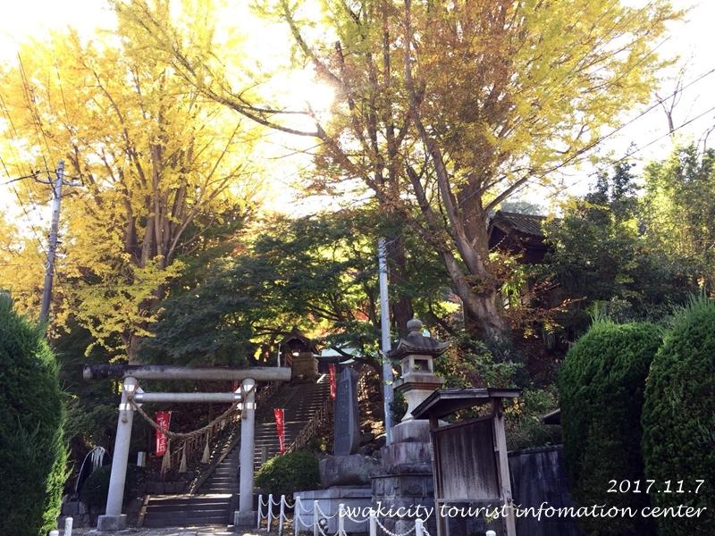 紅葉情報2017 温泉神社 [平成29年11月7日(火)更新]1