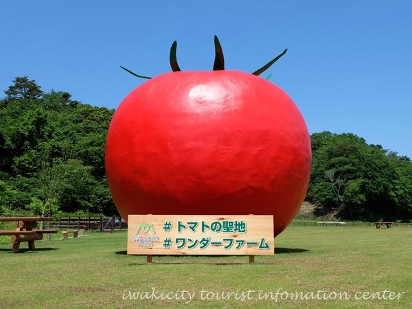 「WONDER FARM 秋の収穫祭2017」11月3日(金・祝)より開催![平成29年10月31日(火)]3