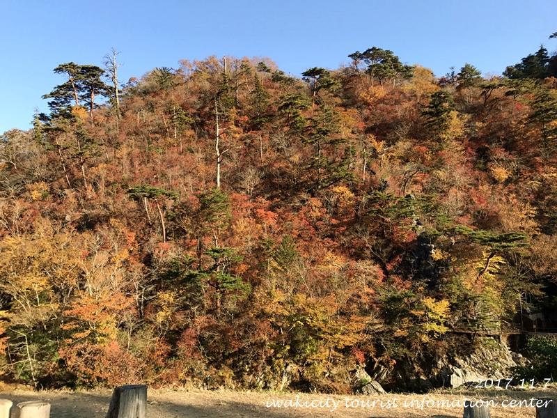 紅葉情報2017 温泉神社 [平成29年11月7日(火)更新]7
