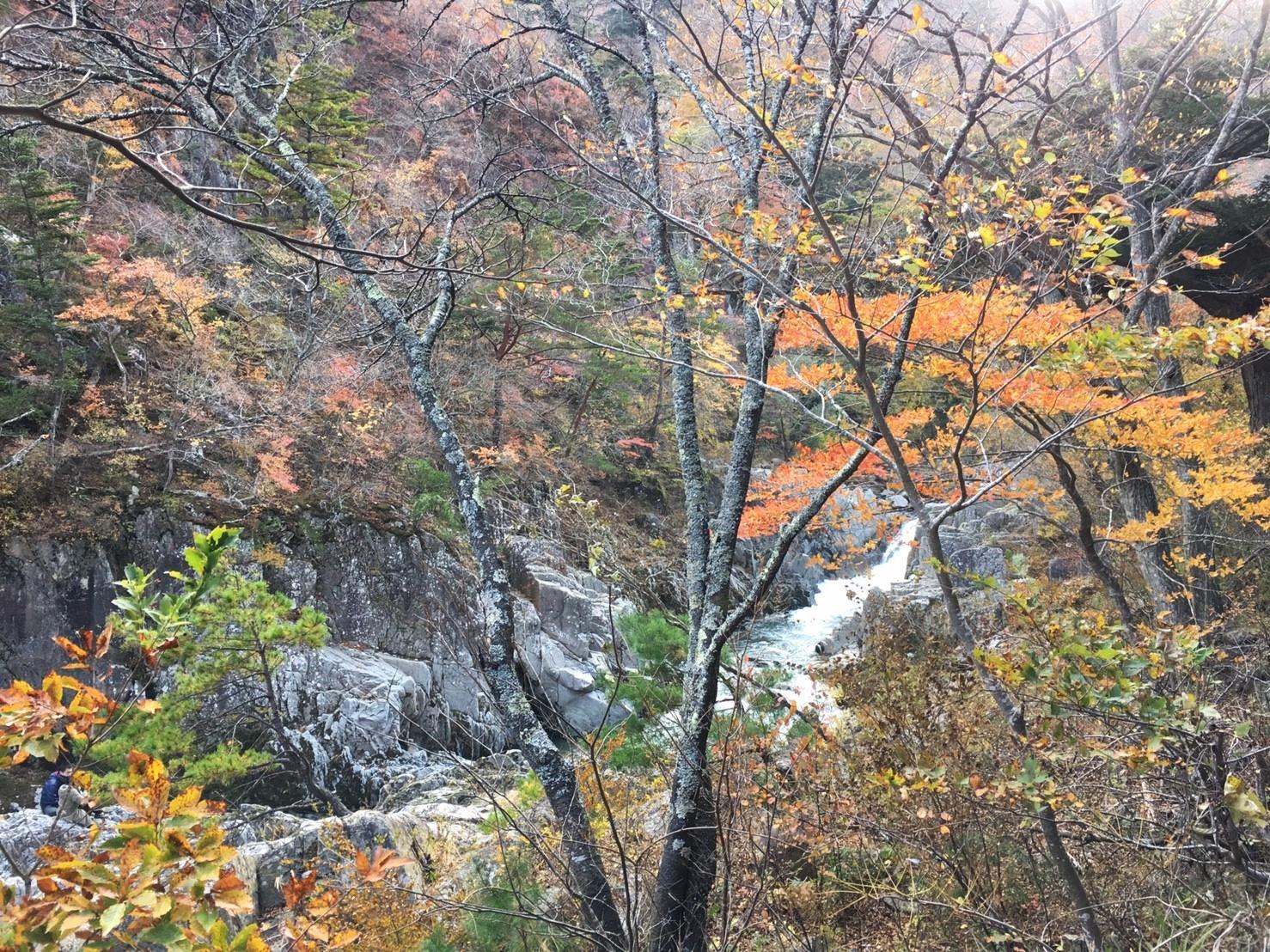 籠場の滝-1