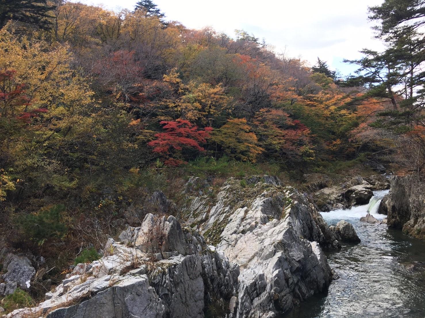 籠場の滝上流-1
