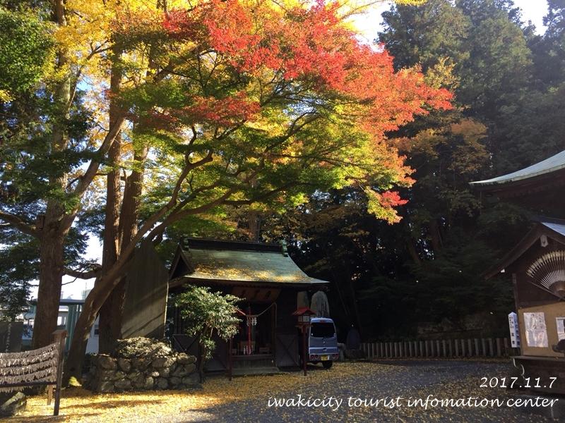 紅葉情報2017 温泉神社 [平成29年11月7日(火)更新]6