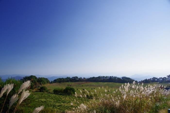 天空の高原