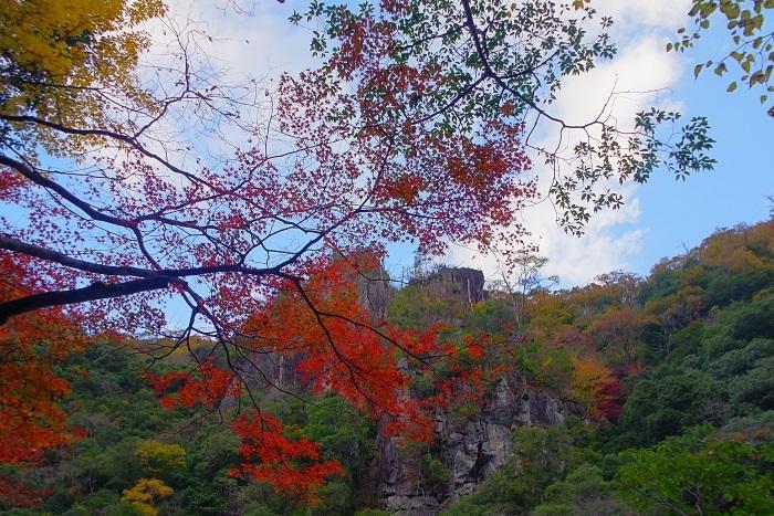 青空に広がる渓谷の紅葉