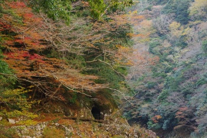 色づいた洞窟