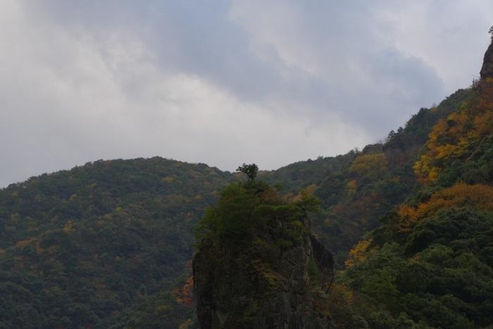 岩の上の孤独