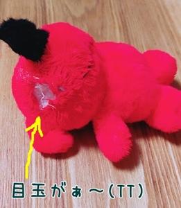 2017-10-29 可哀相なチーバ君-crop