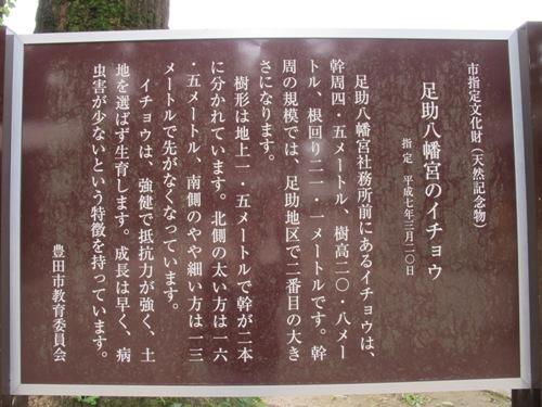 奥三河 (82)