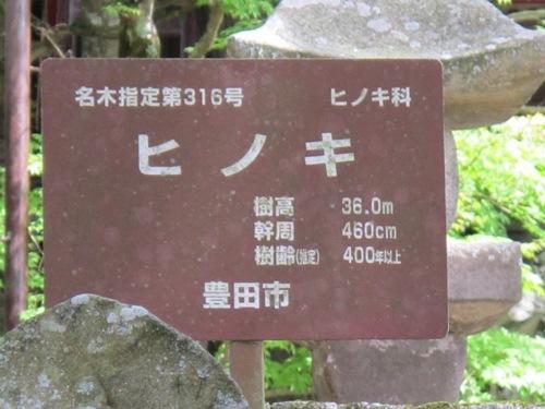 奥三河 (167)