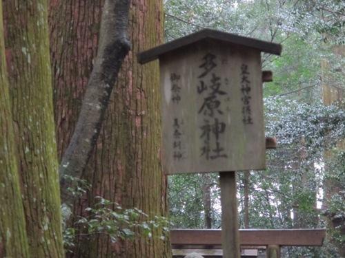 紀北と松阪 (33)