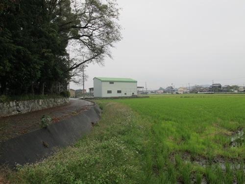 紀北と松阪 (41)