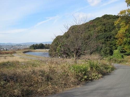 山辺の道 (92)