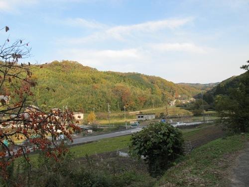 山辺の道 (225)