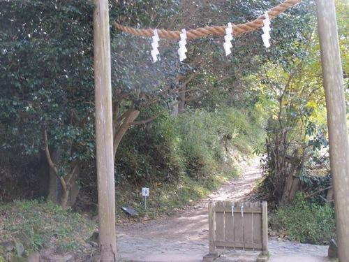 山辺の道 (146)