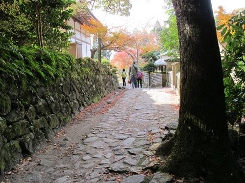 山辺の道 (148)