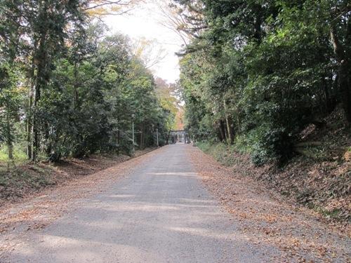 山辺の道 (172)