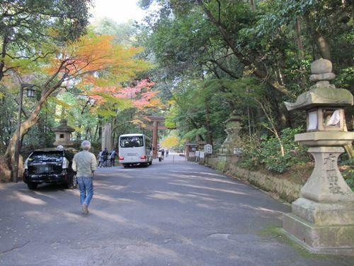山辺の道 (206)