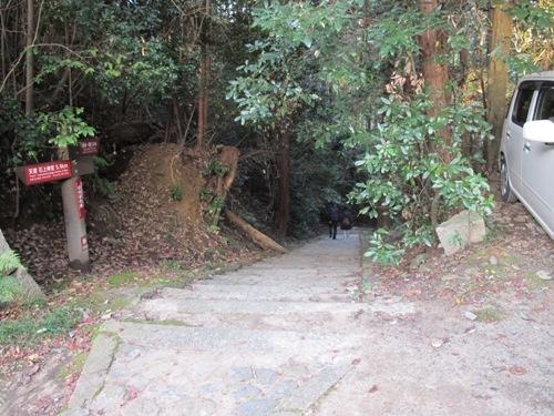 山辺の道 (241)