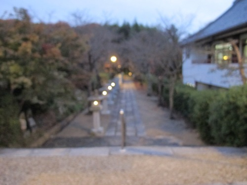 山辺の道 (246)