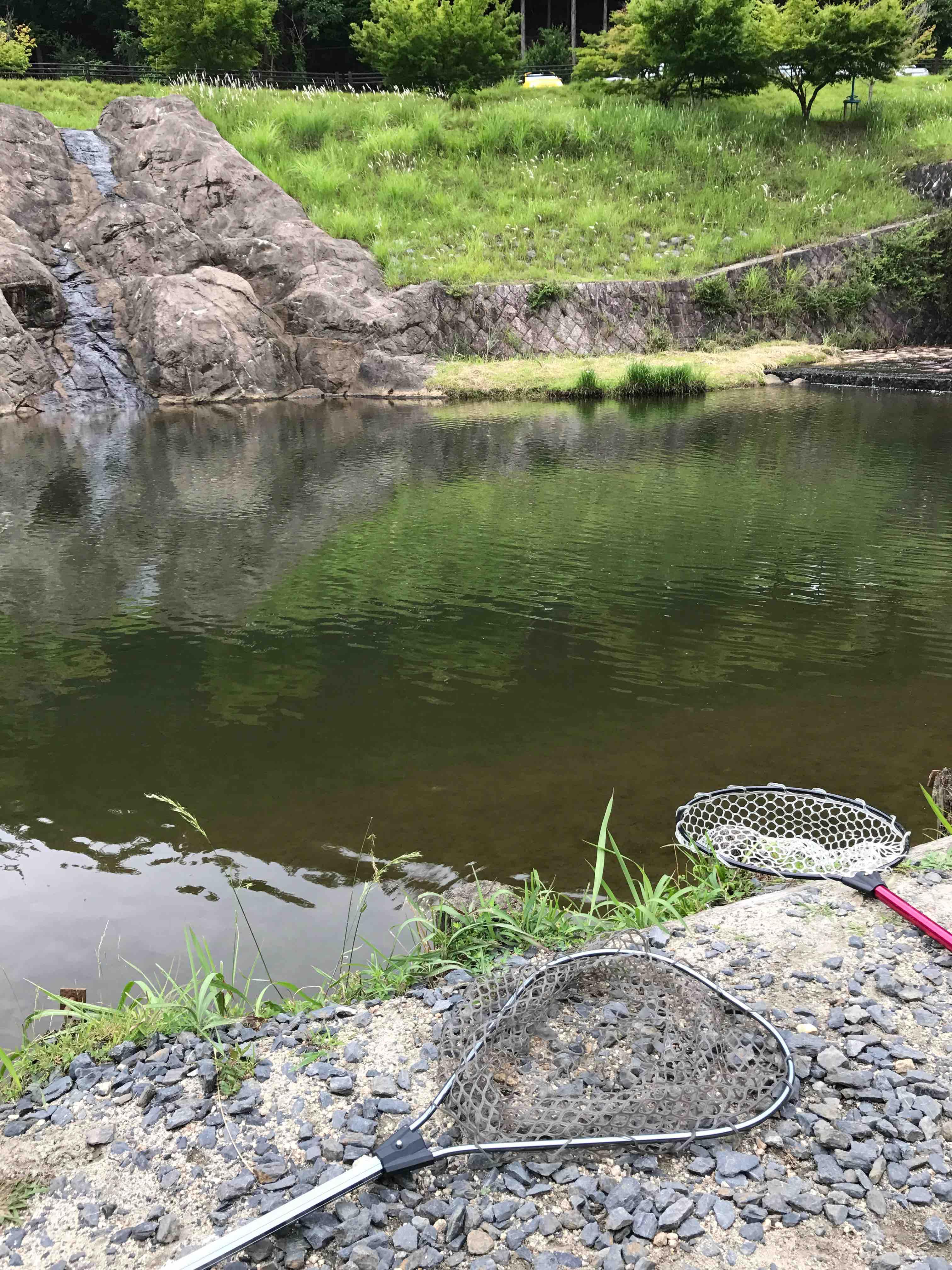 なごみの湖 管釣り