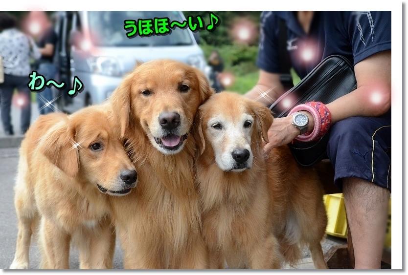 DSC_9505うほ~