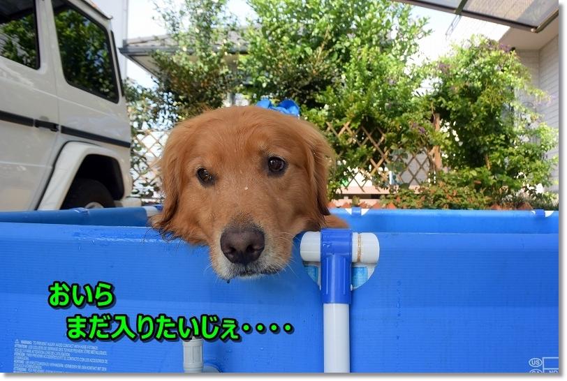 DSC_9343え~?