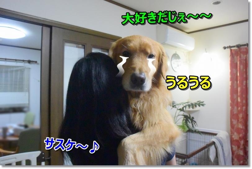 DSC_9473うるうる