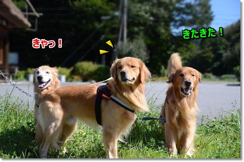 DSC_0132待ち切れないじぇ~