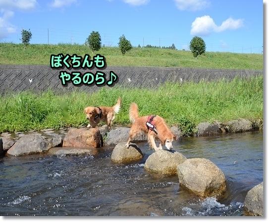 DSC_0145 ♪♪
