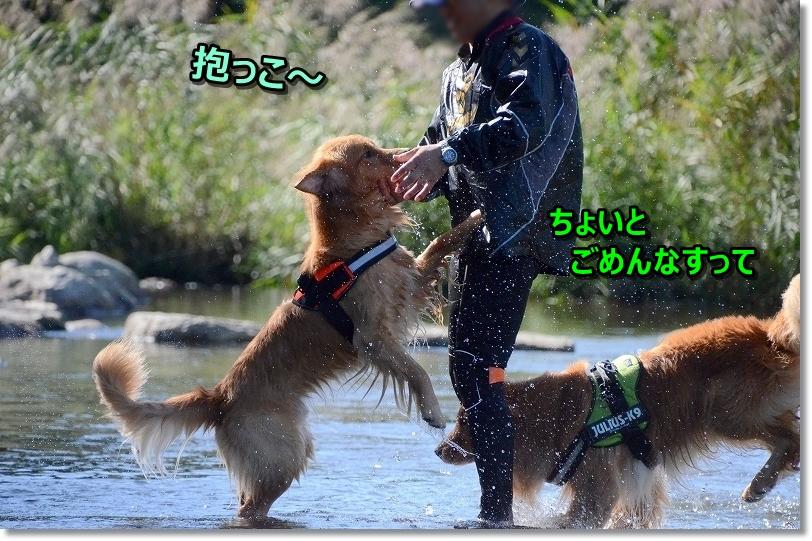 DSC_0333抱っこ♪