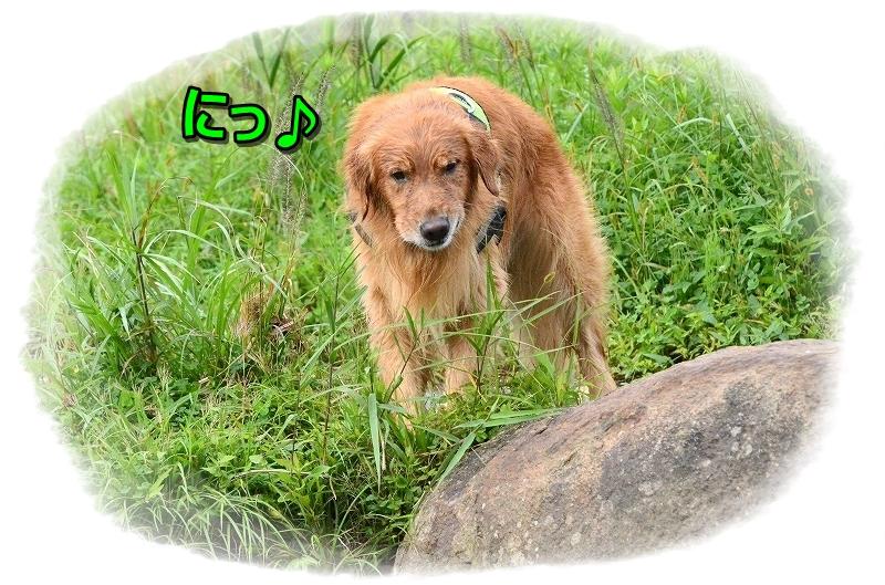 DSC_0813むひゅひゅ