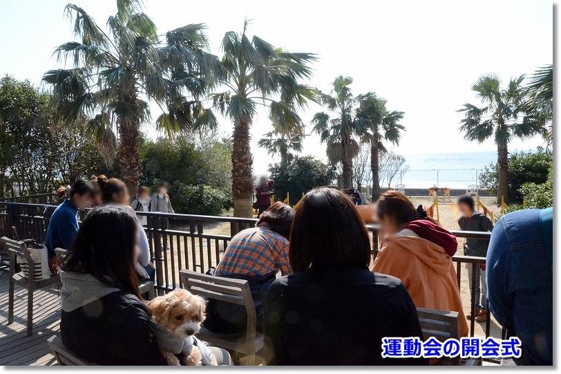 DSC_1598開会式