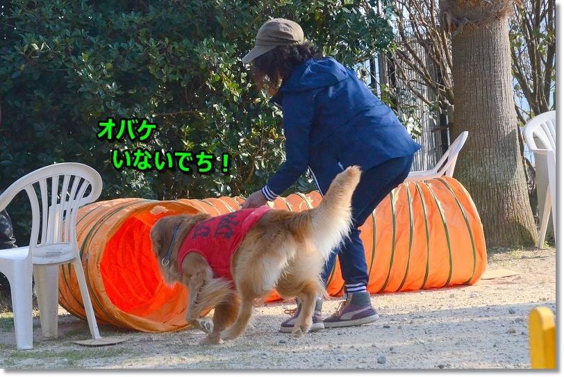 DSC_2011トンネル平気だよ~